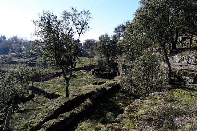Citânia de Briteiros - Guimarães