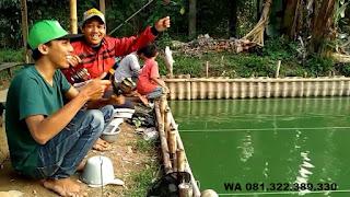 Master Umpan Ikan Mas