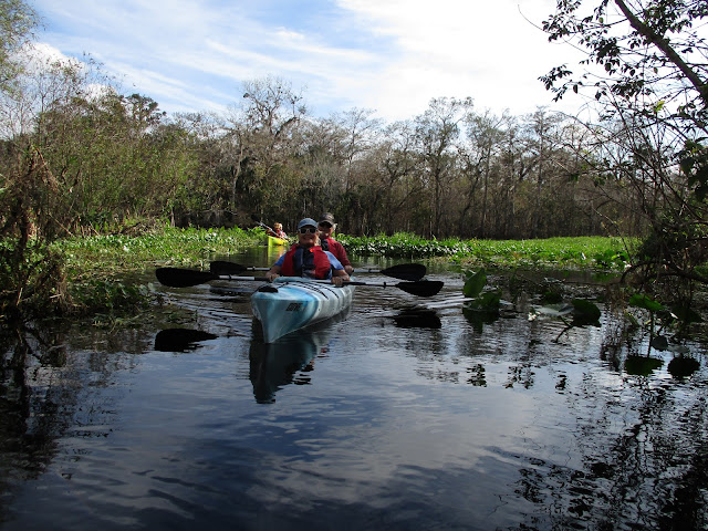 Kayaking near Daytona Central Florida Nature Adventures