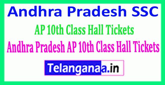 Andhra Pradesh SSC Hall Ticket AP 10th Class Hall Tickets Download