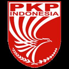 20. Partai Keadilan dan Persatuan Indonesia (PKPI)