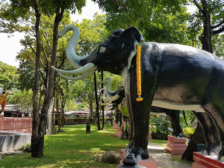 園區有許多象,從大象的底下走過會有意外的驚喜