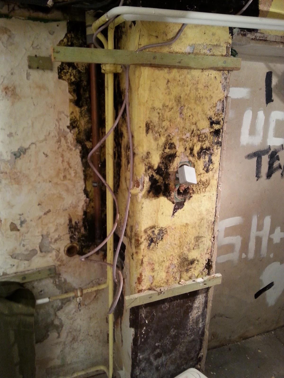 Feuchtigkeitsprobleme Am Haus ?: Altbausanierung Kellerfeuchtigkeit