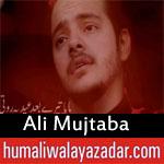 https://www.humaliwalayazadar.com/2018/06/ali-mujtaba-ramzan-noha-2018.html