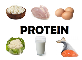 protein-www.healthnote25.com