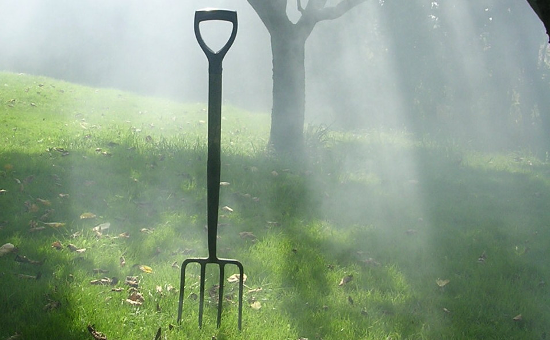 Photo (cropped) of a pitchfork. Taken by Edward Simpson (August 26, 2007).