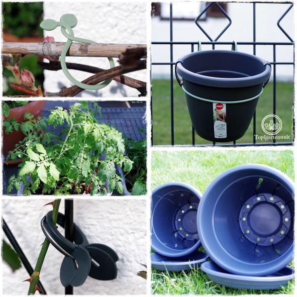 Gartenblog Topfgartenwelt Produkttest EMSA My City Garden: die ersten Versuche im Garten werden gestartet, die Pflanzklammern erweisen sich als sehr praktisch