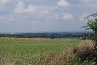 Blick auf Köln und Wesseling - im Vordergrund ist eine Wiese zu sehen
