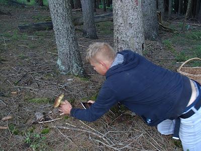 grzyby w sierpniu, grzyby 2016, poranek w górach, grzyby na Orawie, poranne grzybobranie