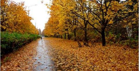 الكآبة من الأمراض القاتلة : 10 خطوات للتخلص من كآبة الخريف