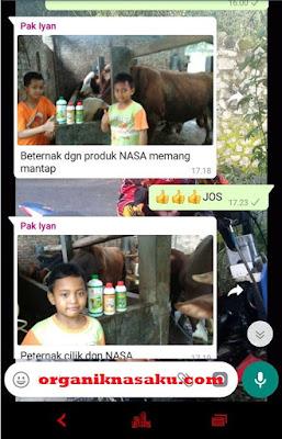Jual Viterna Plus Nasa Di BARON NGANJUK 082334020868