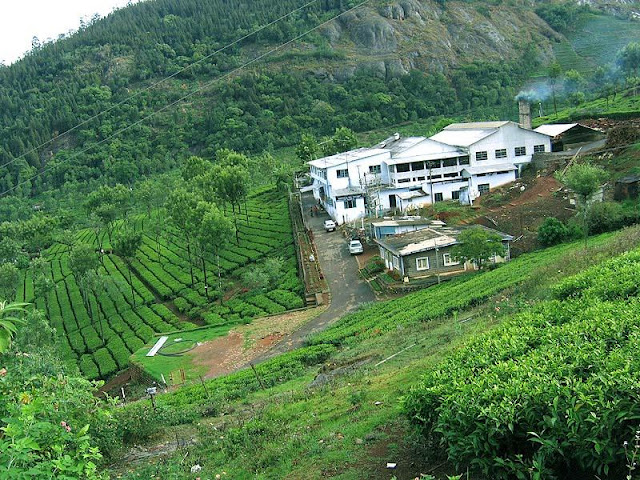 ooty best tourist places in summer or winter
