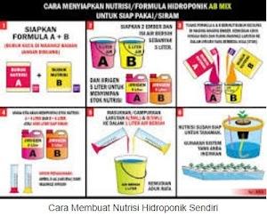 Cara Membuat Nutrisi Hidroponik Sendiri