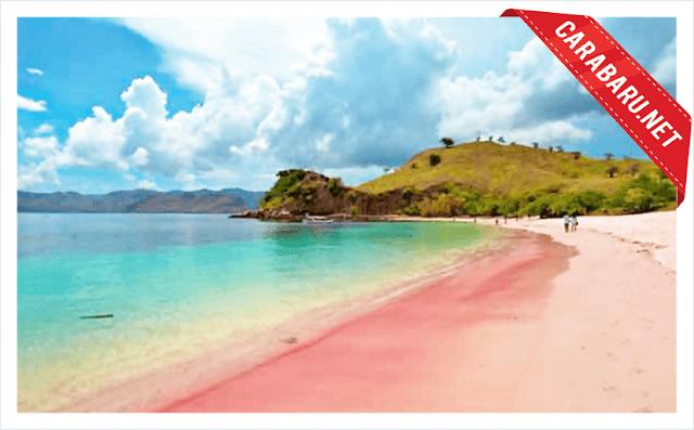Pantai Pink   carabaru.net