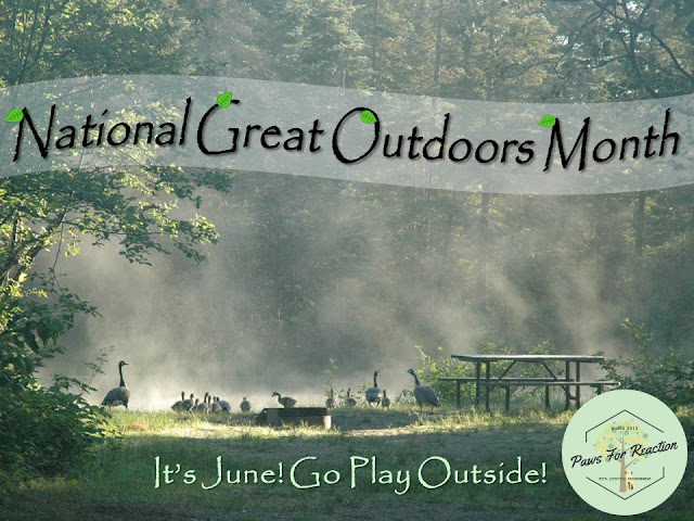 June is Great Outdoors Month: Canada's protected areas