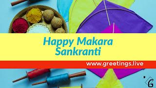 Makara Sankranti Festival Kites 2018