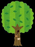 夏の木のイラスト