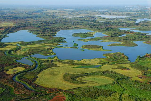 Reserva de la Biosfera Pantanos Centla, Tabasco