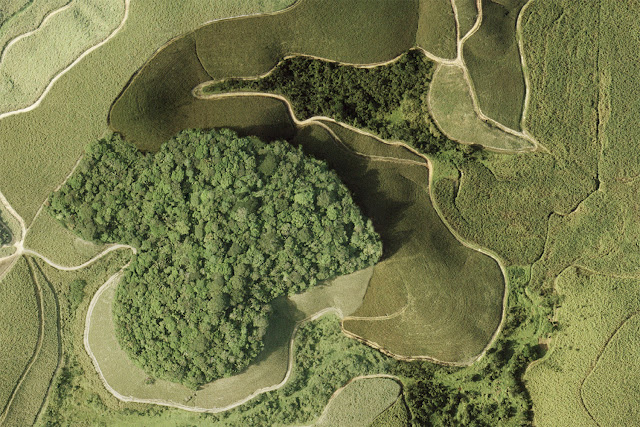 Fragmentation of tropical forests increases global emissions of greenhouse gases