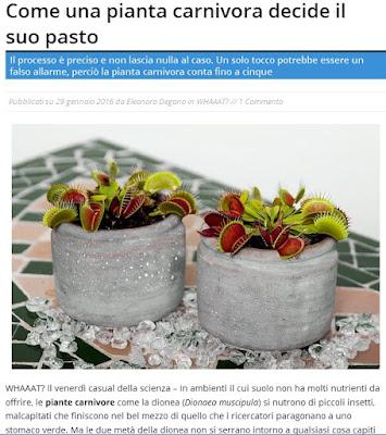 http://oggiscienza.it/2016/01/29/dionea-piante-carnivore-fisiologia/