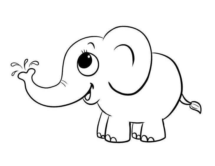 Tranh tô màu voi con cho bé