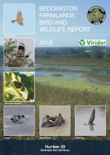 BEDDINGTON FARMLANDS BIRD AND WILDLIFE REPORT 2018