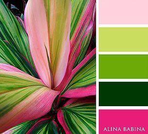 Muestra 6 de paleta de colores