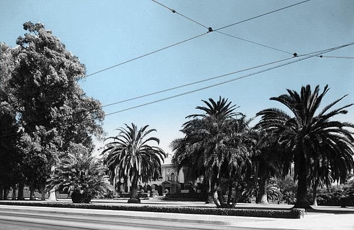 Adams Boulevard