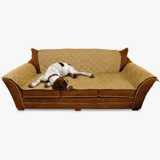 couch covers for pets