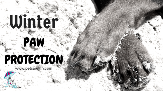 Winter Paw Protection