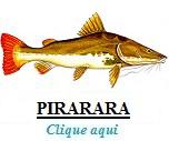 Peixe, Pirarara
