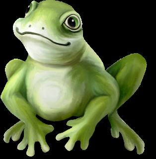 tube de rana saltando