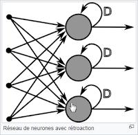 Réseau neuronale à rétroaction