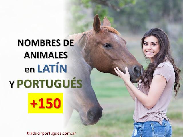 nombres científicos de animales, traducciones de portugués, traductora de portugués