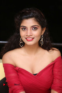 Actress Bindu Pictures in Red Dress at Attarillu Movie Press Meet  0148.JPG