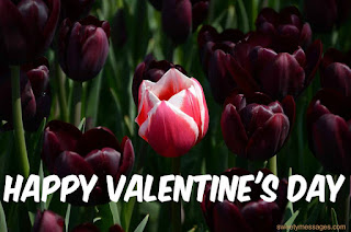 happy valentine day images for love