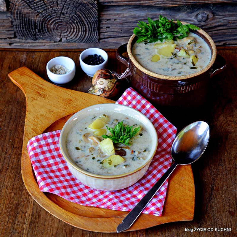 zupa grzybowa, grzyby, sezon na grzyby,