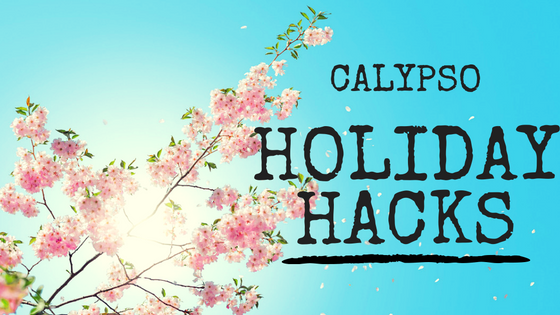 Calypso Holiday Hacks Campaign