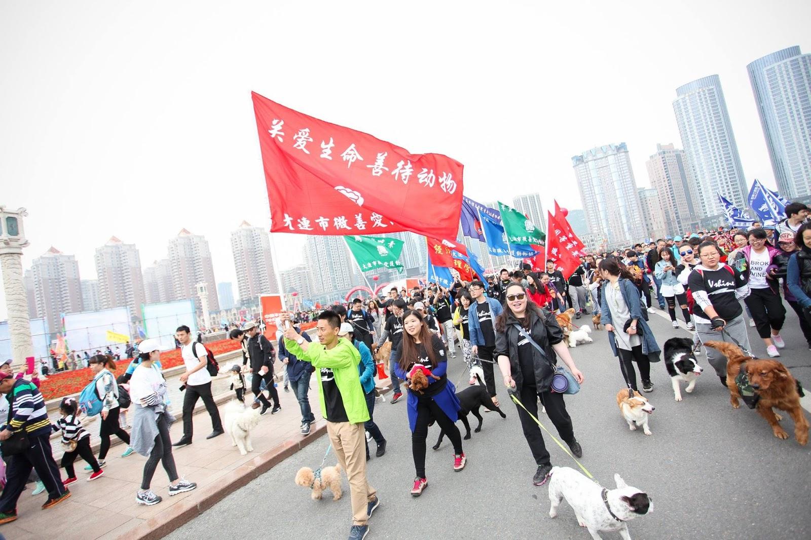 Manifestação na China contra Festival Yulin
