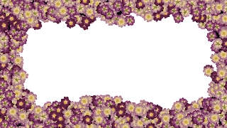 10 flores FHD png