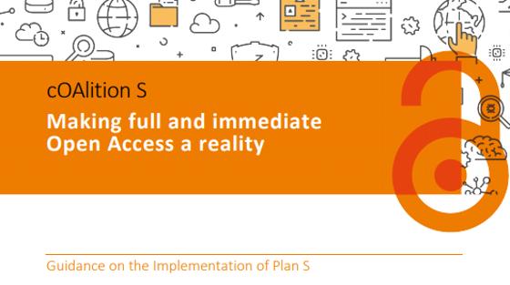 Guía de implementación del plan S