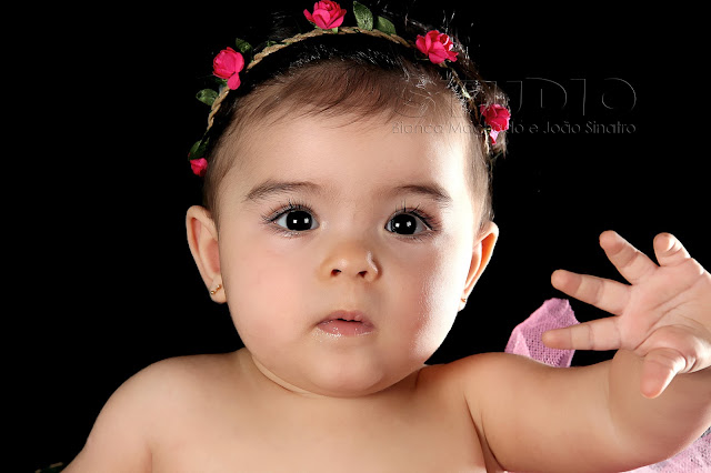 fotos bebezinhos em estudio
