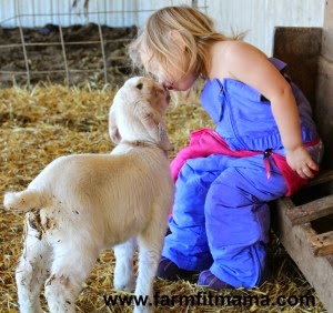 Farm Fit Mama's Raising Kids: Two Bottle Babies in 2015