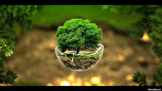 HD Wallpaper of Nature, 3D Nature Image, 3d Nature Wallpaper