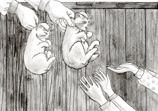 Auch kleine Katzen werden irgendwann groß und müssen das Haus verlassen