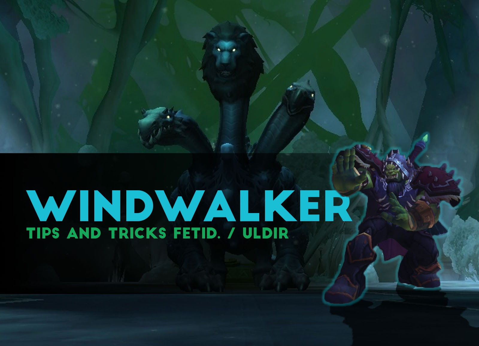 WindWalker Tips and Tricks Fetid Devourer / ULDIR - Patch 8.0