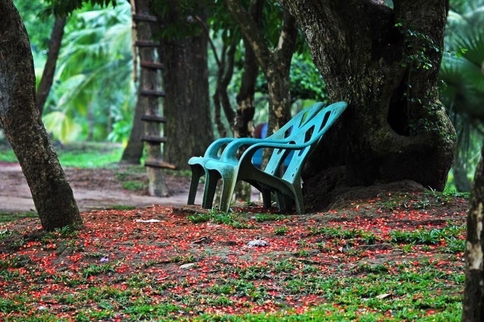 Zinda Park, Narayanganj [Travel Guide] - Geek Bangladesh