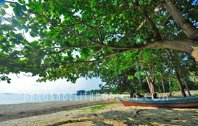 wisata-pantai-teluk-uber-bangka-belitung
