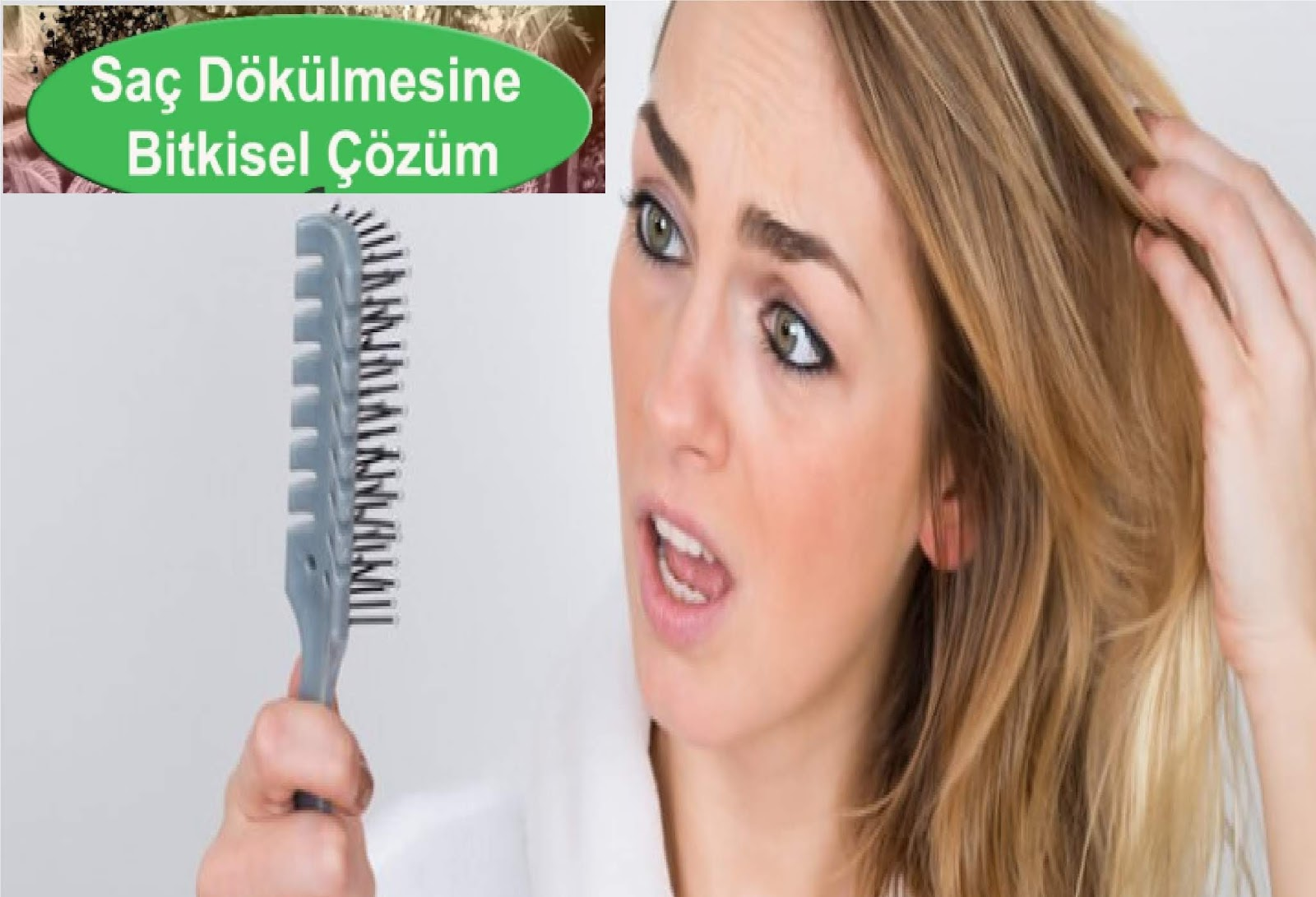 Saç Dökülmesine Bitkisel Çözüm ve 5 Doğal Tarif