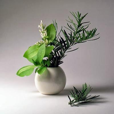 Một số Mẫu cắm hoa tuyệt đẹp, Nghệ thuật cắm hoa nhà thờ, Cắm hoa phụng vụ, cắm hoa nhà thờ đẹp, cắm hoa nghệ thuật, cắm hoa theo mùa phụng vụ